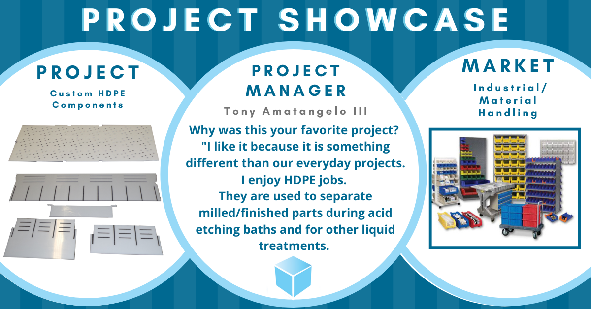 revised projectshowcase